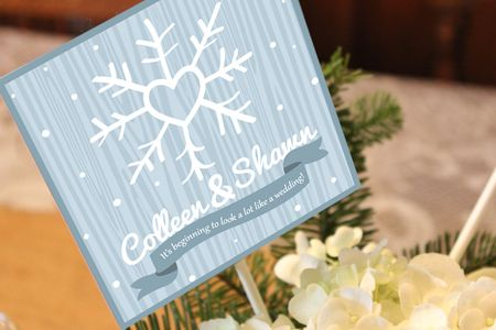 Winter-Wedding-Bridal-Shower-Colleen-1-start-image-2